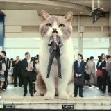 Јака јапонска реклама сo џиновска мачка