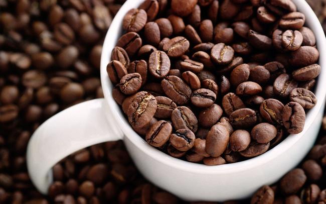 kafe05