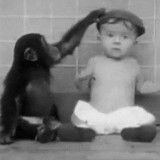 bebe-majmun