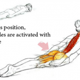 The Perfect Exercise For Poor Body Posture
