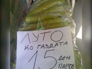 makedonija-23