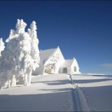 this_proves_that_winter_is_a_magical_time_of_the_year_640_23