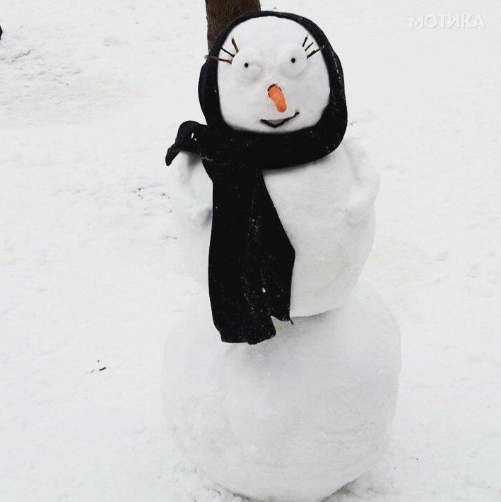 Снешко шмизла   Кандидат бр 21  на изборот за НАЈОТКАЧЕН МАКЕДОНСКИ СНЕШКО за 2017