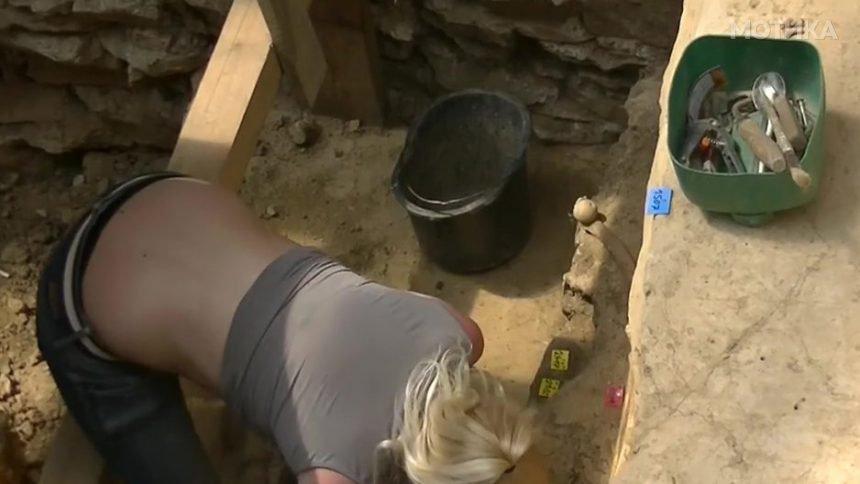 Опасна плавуша   археолог