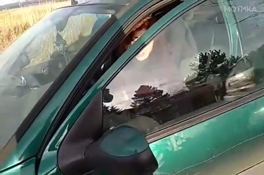 Полјакот се изнервира од мрзливата жена која си го шета кучето со автомобилот